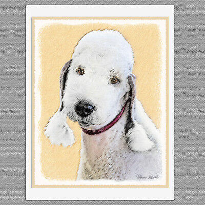 6 Bedlington Terrier Dog Blank Art Note Greeting Cards