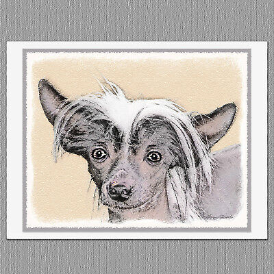 6 Chinese Crested Hairless Dog Blank Art Note Greeting Cards