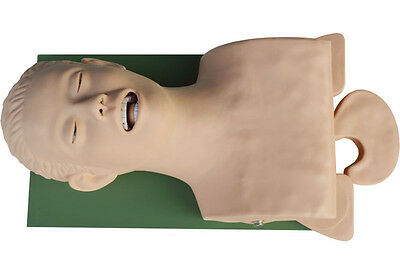 Teaching Airway Management Intubation Manikin 220V New