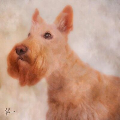 "Scottish Terrier dog GEP Signed 12"" x 12"" Art Print / Painting / Watercolor"