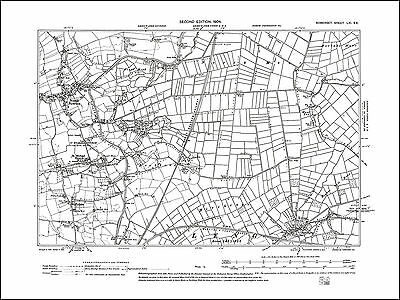 North Newton, Lyng, old map Somerset 1904: 61SE repro