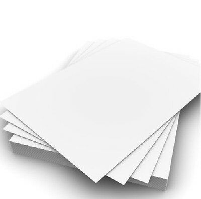New Box (2500 Sheets, 5 Reams) A4 Paper 80GSM Photocopy & Printing Paper