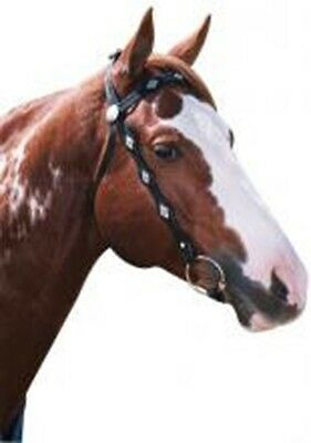 Western - Scalloped Silver Bridle