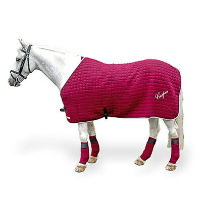 THERMATEX PONY MULTI PURPOSE  WICKING HORSE RUG. Choice 22 colours & 19 bindings