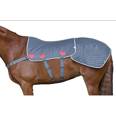 Equilibrium Magnetic Therapy Back Pad