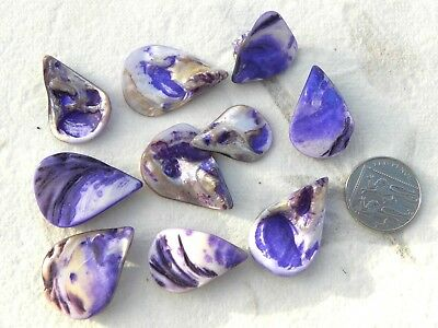 10 Pearlised Purple & Natural Teardrop Shell Pendants With Hole Crafts Jewellery