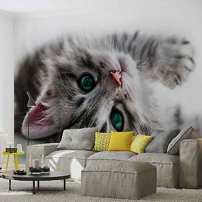 WALL MURAL Cat Kitten XXL PHOTO WALLPAPER (1183DC)
