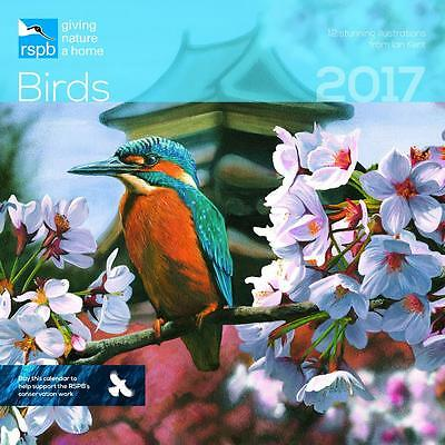 Square Wall Calendar Of Official Rspb Birds By Ian Kent 2017 + Free Uk Postage
