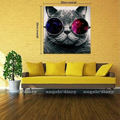 Large Cool Glasses Cat Unframed HD Canvas Print Wall Art Picture Poster