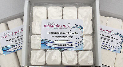 PREMIUM CALCIUM and MINERAL BLOCKS (in 6 sizes) + Vitamins + Spirulina + Food