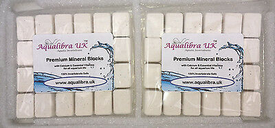 PREMIUM CALCIUM and MINERAL BLOCKS (Double Pack) + Vitamins + Spirulina + Food