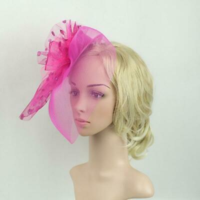 Flower Dot Feather Mesh Fascinator Hat on Clips Derby Race Veil Net Hatinator