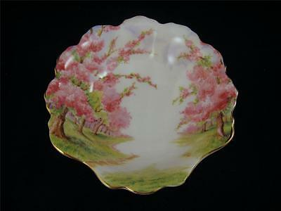Royal Albert BLOSSOM TIME Shell Shaped Candy Nut Dish Bowl 1ST QUALITY England