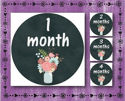 "Grey & Floral - Baby Milestone Stickers - Months 1-12 - 2.5"" Round Glossy Labels"