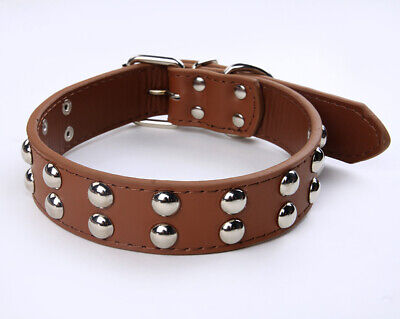 Leather Flat Stud Dog Collar - Staffy,Pit bull,Boxer etc