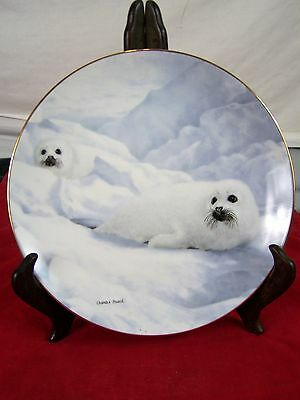 Peace On Ice 326A Charles Frace 9Th Issue Natures Playmates Harp Seal Fine China