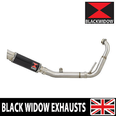 YZF-R125 YZFR125 08-13 Exhaust System 230mm GP Black Stainless Silencer BG23R