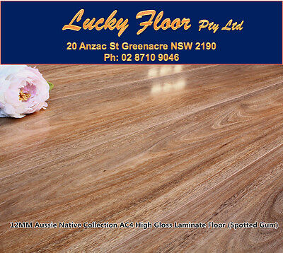 12mm High Gloss AC4 Spotted Gum LAMINATE FLOORING /FLOATING FLOOR