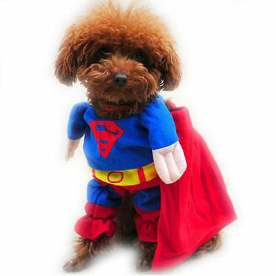 Superman Costume For Dogs (Or Cats)   For Small / Medium Dogs Dcl 26