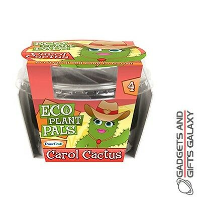 CAROL CACTUS ECO PLANT PAL GROW YOUR OWN MINIATURE KIT summer discovery toy gift