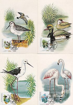 Portugal 1982 Birds Set of 4 Maximum Cards