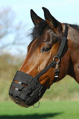 Horse Grazing Muzzle, Restrict Grazing Help Prevent Laminitis, Pony Cob, Full