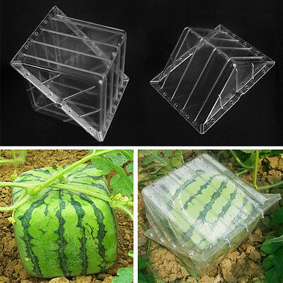 Square/Heart-shaped Watermelon Shaping Mold Garden Fruit Growth Forming Mould