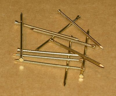 Panel Pins - Solid Brass - 20 x 1.4mm - Use select box to choose quantity