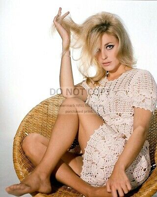 Actress Sharon Tate - 8X10 Publicity Photo (Zy-245)