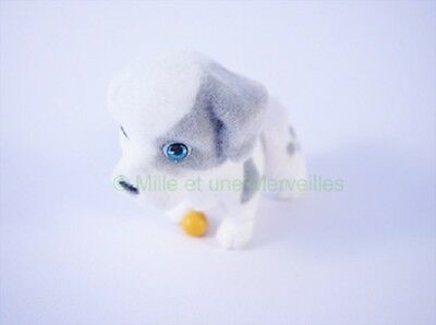 Puppy and Kitty in my Pocket Figurine ECAILLE DE TORTUE sa carte