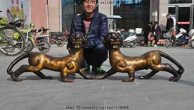 """24"""" chinese fengshui bronze gilt flower Pattern animal tiger beast lucky statue"""