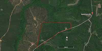 35+ Acres Hunting Land Tract Talbot County GA