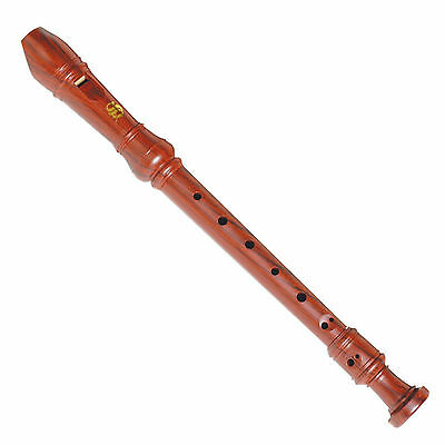 5 PACK Steinhoff 'Wood-Look' Recorder for Kids with Cleaning Rod and Case BULK