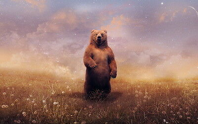 Home Decor Living room art wall lovely Brown bear oil painting printed on canvas