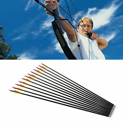 "12 pcs Hunting Archery Fiberglass Arrows 28"" 30"" 32"" Field Point Target Practise"