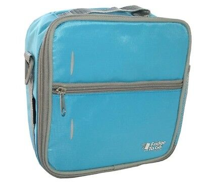 Fridge To Go Lunch Box (Blue) - Small