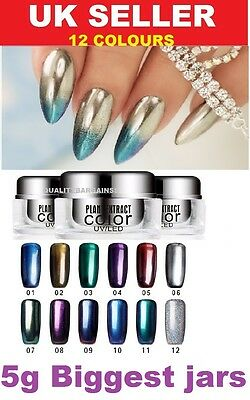 12 COLORS Mirror Powder Chrome Effect Glitter Magic Shimmer Nail Art Powder 5g