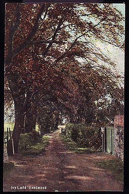 EASTWOOD IVY LANE VINTAGE POSTCARD Clumber Series To Miss Shaw Nottingham