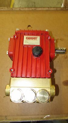 Giant P420CR-0020 Plunger/Piston Pump
