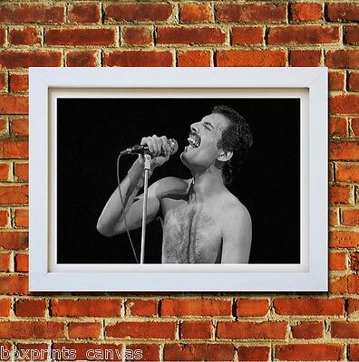 Freddie Mercury Queen Poster Framed Wall Art Print Picture Small Medium Large