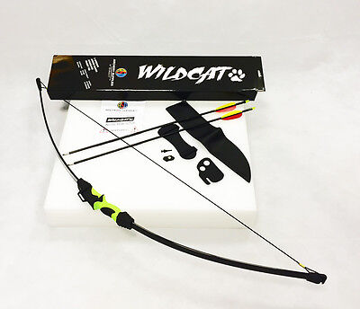 New 2016 ASD Wildcat Kids Childs Archery Recurve Take Down Bow Package W/ Target