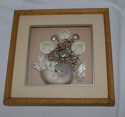 Oak Framed Shadowbox Sea Shells Nautical MOP Coral Polished Nautilus