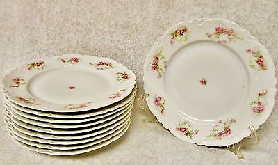 """Lot Of 10 Rare Hab103 8 5/8"""" Luncheon Plates Habsburg Pink Roses Yellow Flowers"""