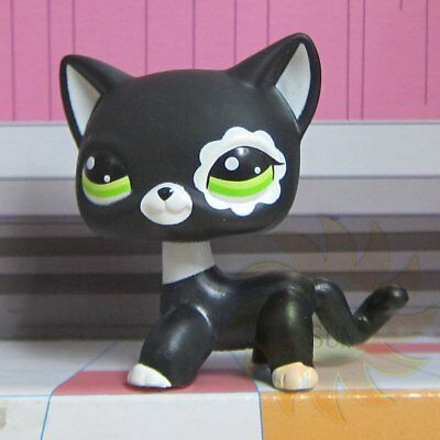 Littlest Pet Shop Animals Collection LPS Toys #2249 Black & White Flower Eyes