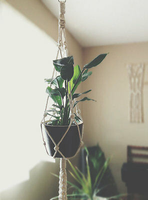 Large Macrame Cotton Plant Hanger 46""