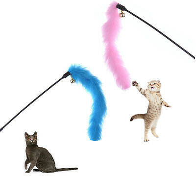 Funny Cat / Kitten Pet Teaser Turkey Feather Activity Toy Teasing Chaser Wand