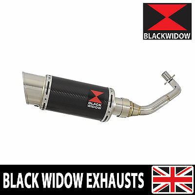 Piaggio Vespa GTV 300 4T 4V ie 2009-2016 Round Carbon End Can Silencer 200CS