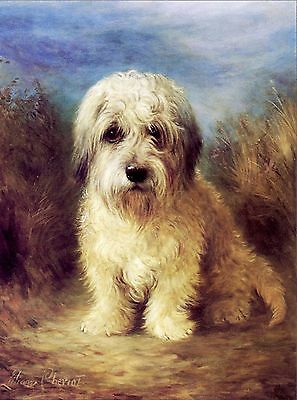 Dandie Dinmont Terrier  Dog Puppy Dogs Puppies Vintage Art Poster Print