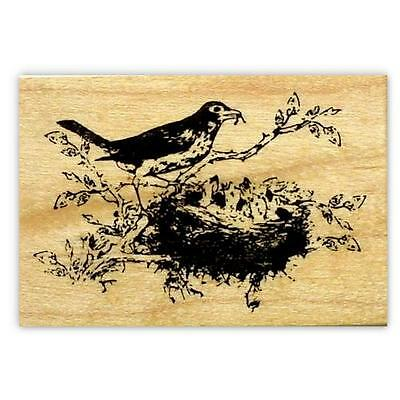 ROBIN with Babies in nest Mounted rubber stamp, mother and baby bird, Spring #9