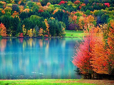 4pack autumn fall scenic scenery stationery notecard notecards
